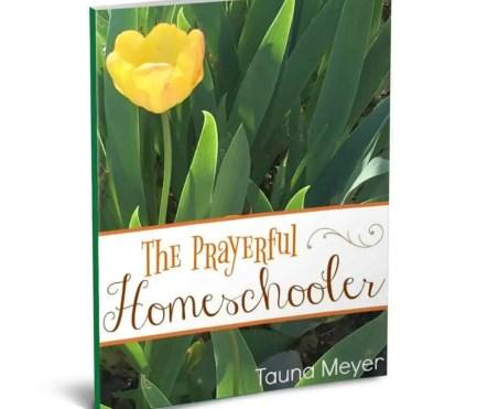 Prayerful_Homeschooler_SQ_530x@2x