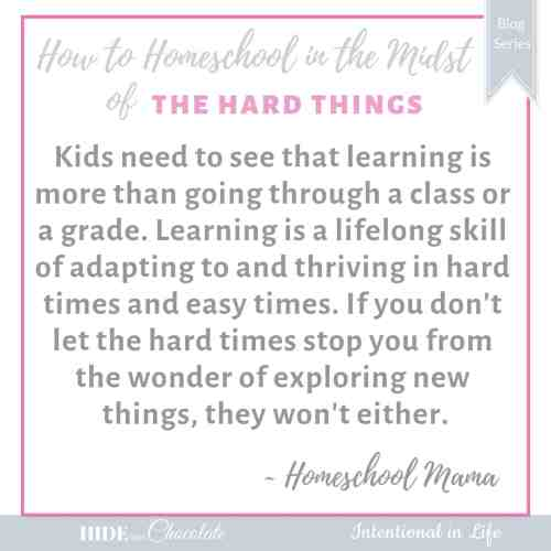 How to Homeschool in the Midst of Divorce Quote