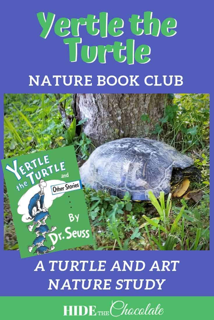 Yertle the Turtle Nature Book Club ~ A Turtle and Art Nature Study