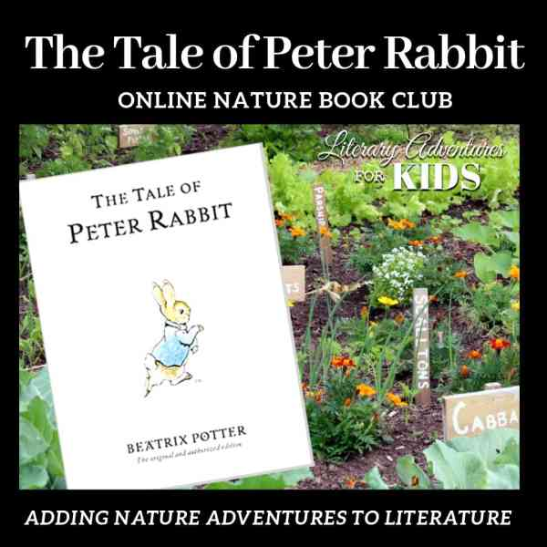 The Tale of Peter Online Nature Book Club Woo