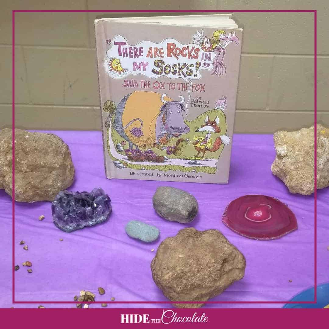 There Are Rocks in My Socks Nature Book Club - Books and Rocks