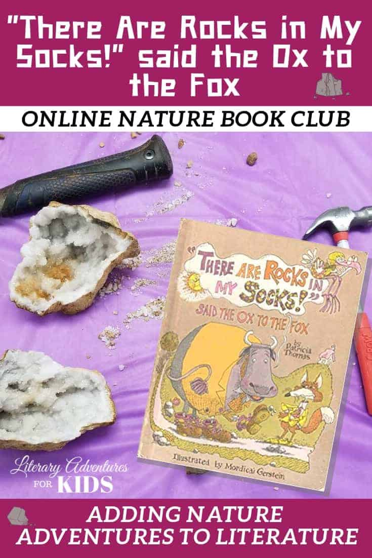 There Are Rocks in My Socks! Online Book Club ~ A Nature Adventure
