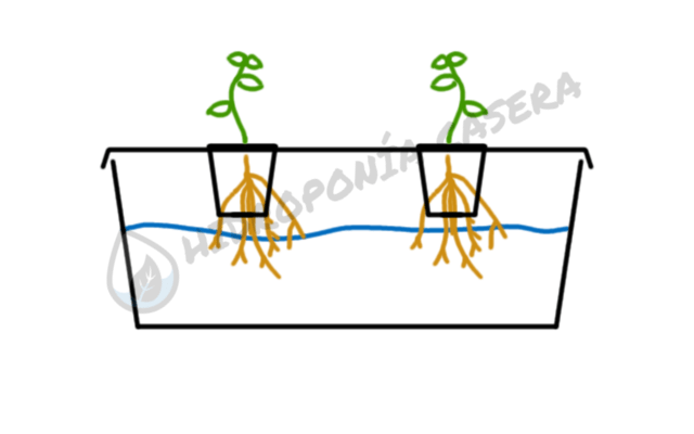 sistema hidroponico corte transversal