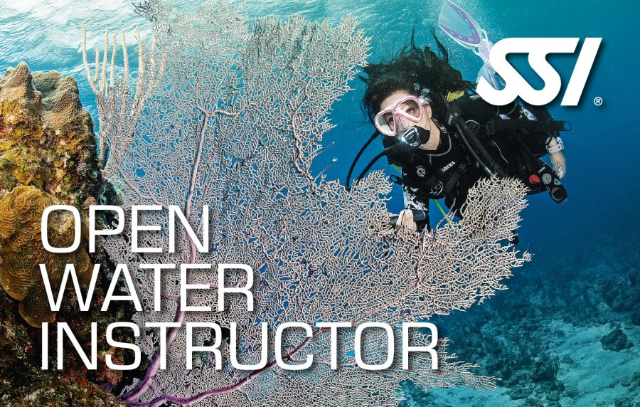 Open-Water-Instructor