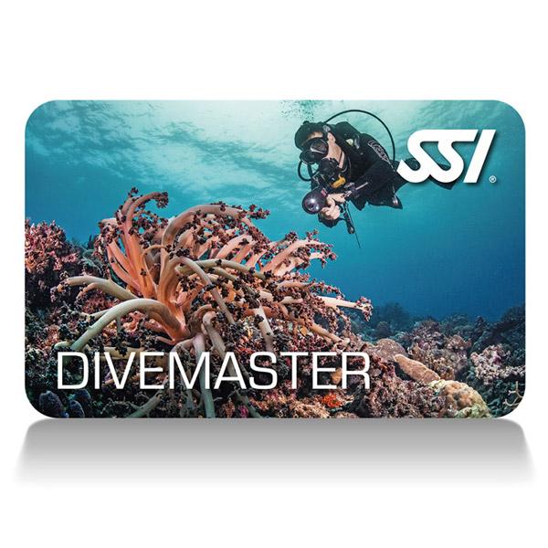 Divemaster-card