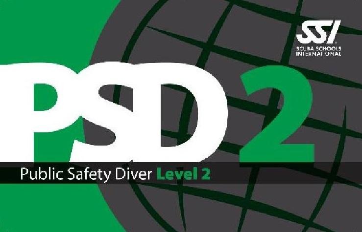 PSD-Nivel-2
