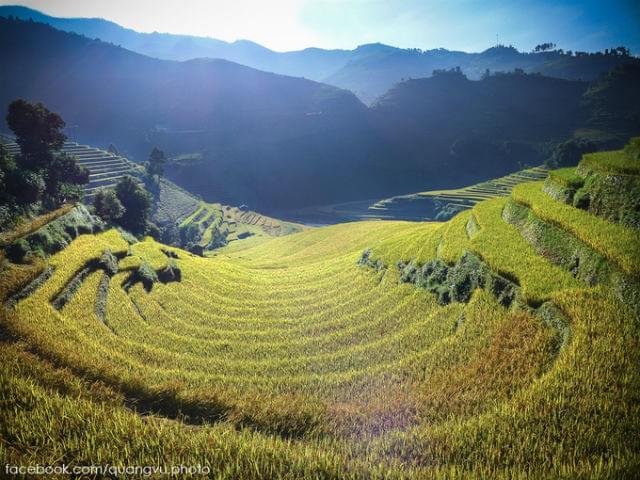 Mu Cang Chai terraced fields.