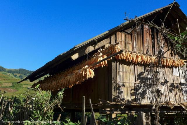 mu cang chai house