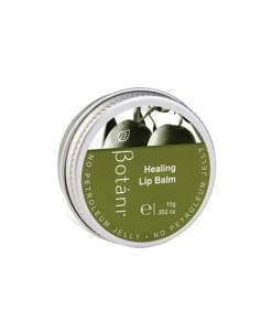 Botani Healing Lip 2