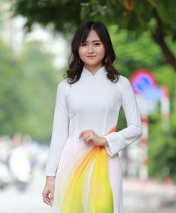 Ao Dai For Sale Vietnam 3D Korea Chiffon