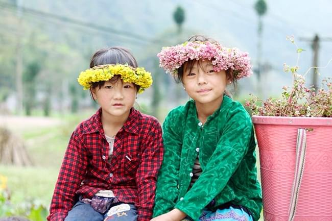 Ha Giang Tam Giac Mach flowers Festival 3