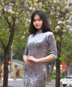 Vietnam Cheongsam Dress