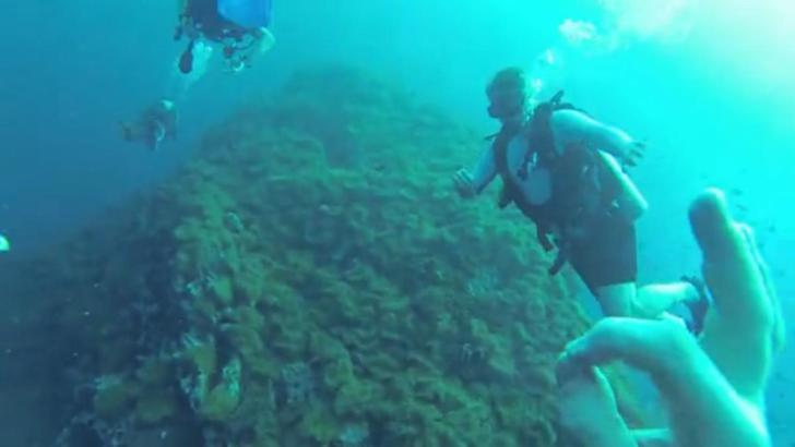 Duiken op Koh Tao (video)