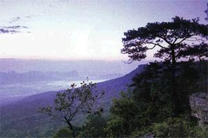 De vijf mooiste nationale parken van Thailand
