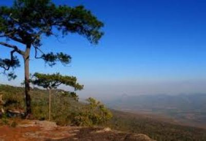 Pra Kradung National Park