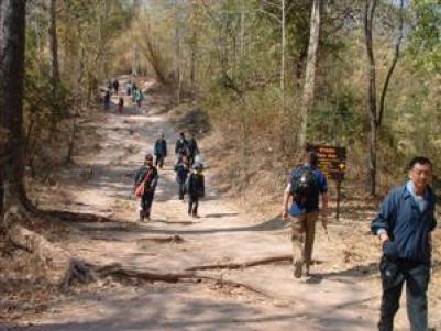 Phu Kradung Nationaal Park