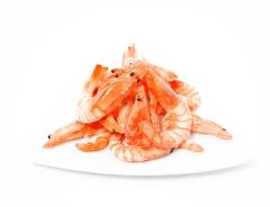 boiled-shrimp-71099_640