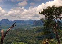 Thaise Ngorn Park Hang Nak voor een gezonde work-out