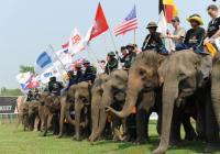 olifantenpolo