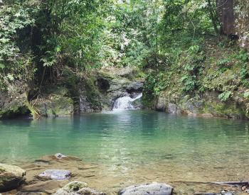 Hiken in Si Phang Nga National Park