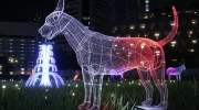 Thailand Illumination Festival, heel veel lichtjes