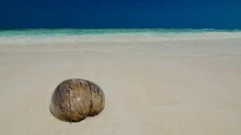 Steeds meer Thaise eilanden op slot