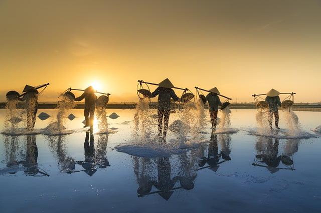 rondreis door Thailand en Vietnam