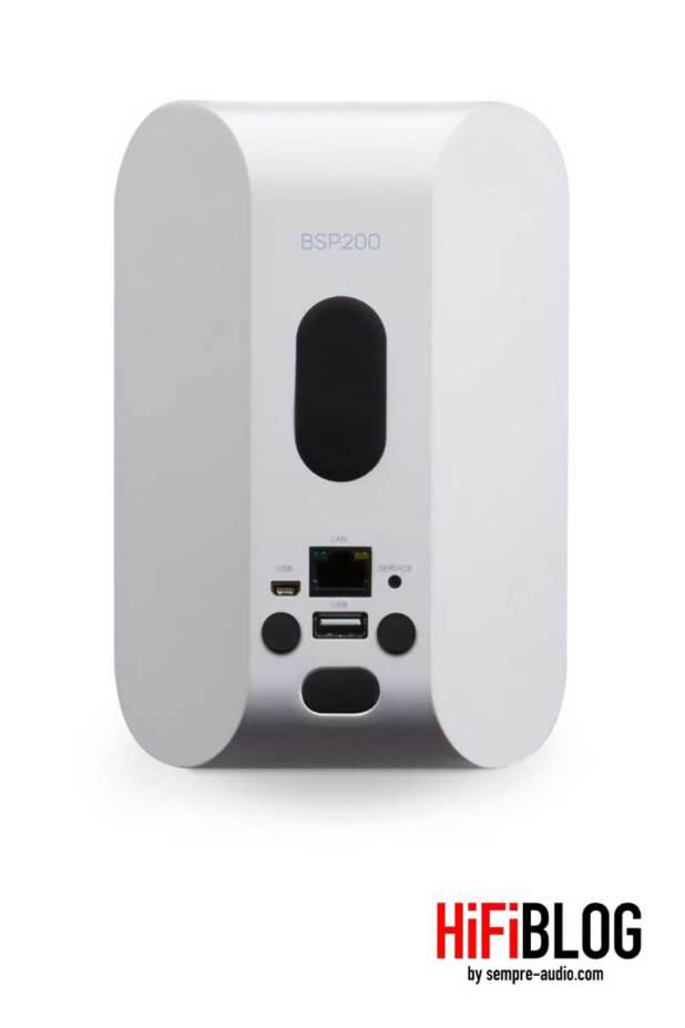 Bluesound Professional BSP200 Network Streaming Speaker 06