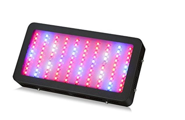Cheap Grow Light