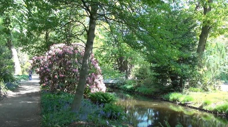 Botanical Garden & Arboretum Trompenburg in Rotterdam