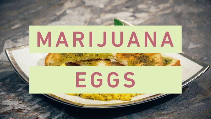 Green Eggs and Toast: Cooking Breakfast with Marijuana