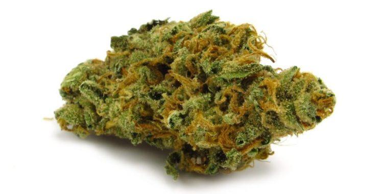 meditation and marijuana