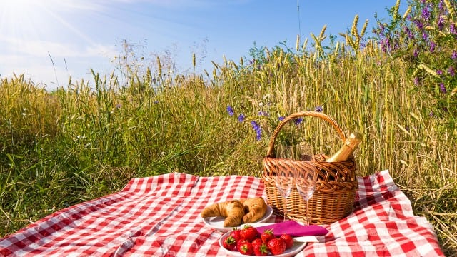 places for picnics