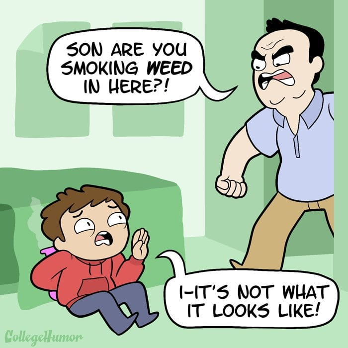 stoner moms babyboomers smoke more weed
