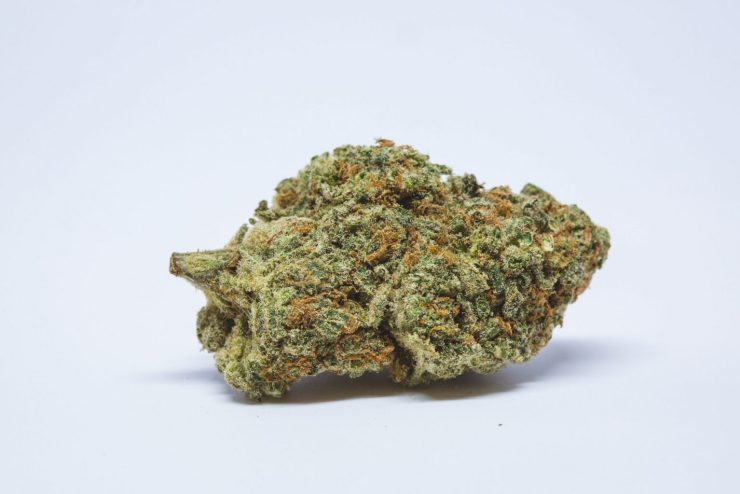 Love Potion - the best weed strain for sex