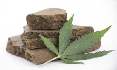 How To Make Hashish