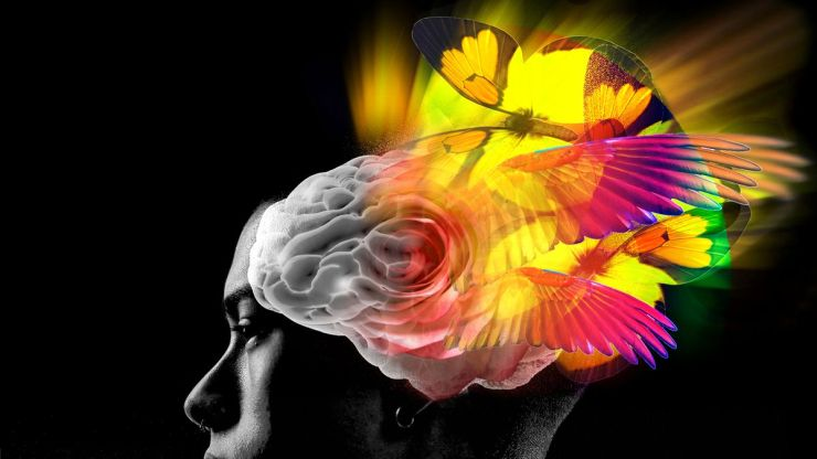 Psychedelics Use and Feelings of Oneness with Nature