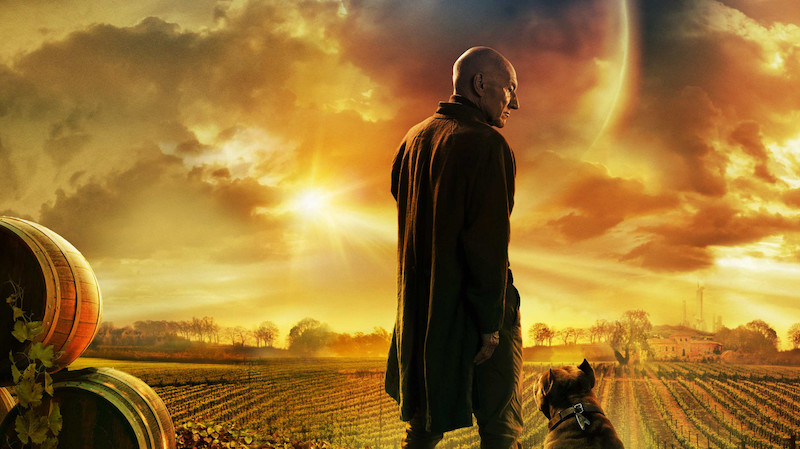 Star Trek: Picard. What Do Stoners Think?