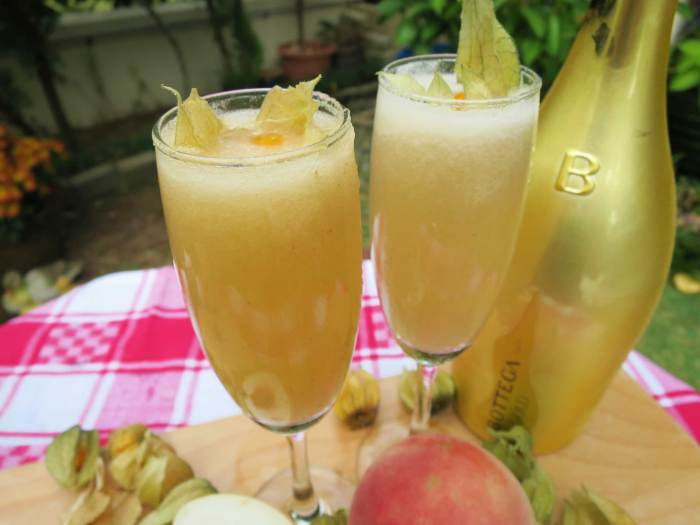 bellinicups