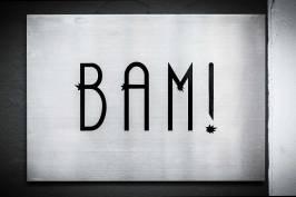 Sake Tapas Pairing at BAM!