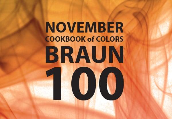 Cookbook of Colors: 100 braune Rezepte [Zusammenfassung November]