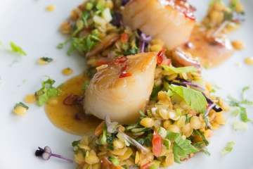 mit-ahornsirup-glasierte-jakobsmuscheln-linsensalat