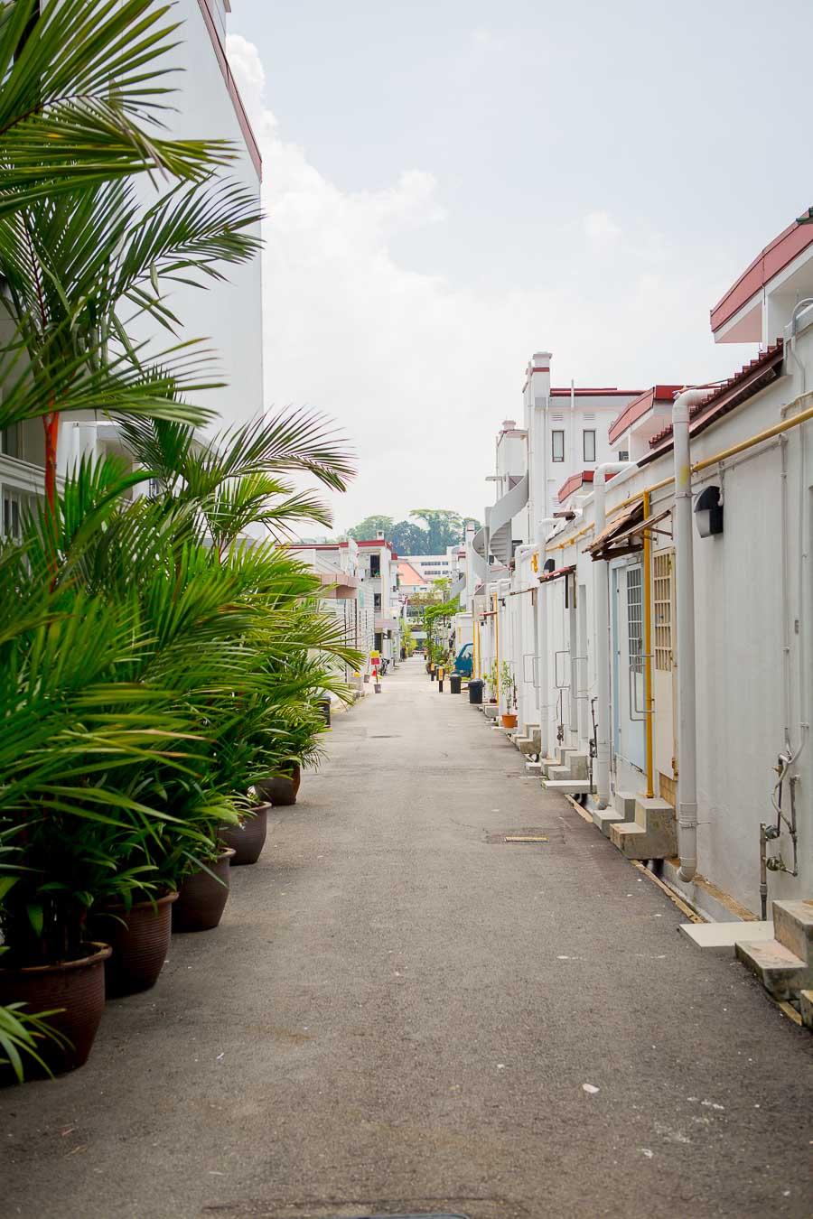 singapur-tag-1-5