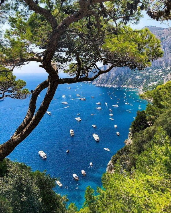 Things to do in Naples: Visit Capri
