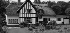 Thatch Property Guides