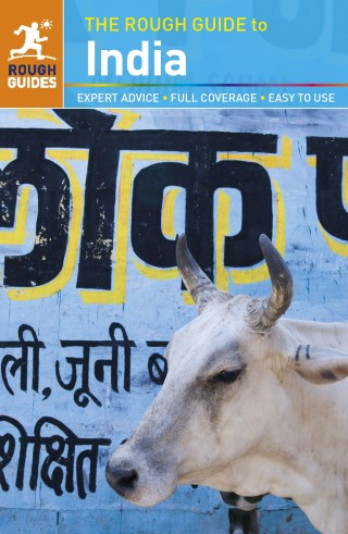 THE ROUGH GUIDE TO INDIA Book Cover