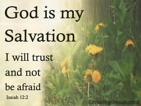Verse of the day - Isaiah 12:2 KJV - Highland Park Baptist
