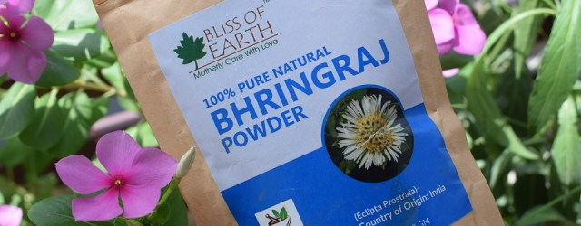 Bliss Of Earth 100% Pure Natural Bhringraj Powder (4)
