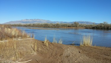 Where Tynan and I walk in the Bosque along the Rio Grande.