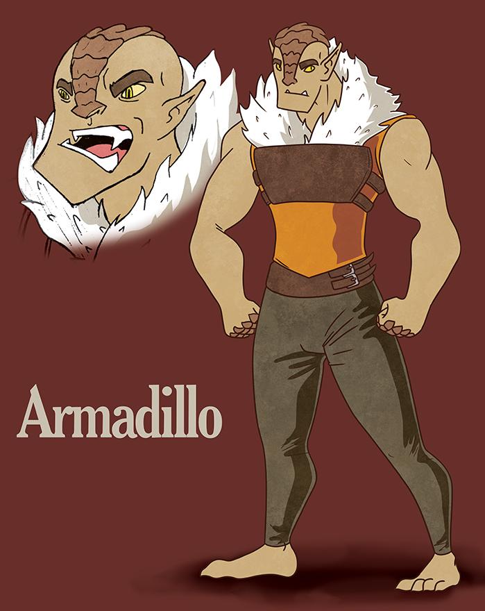 0203-Armadillo